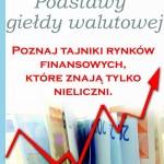 zasady forex podstawy giełdy walutowej
